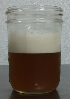 A glass of Portland Soda Works Root Beer