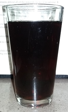 Pint of Montana Brewing Company Root Beer